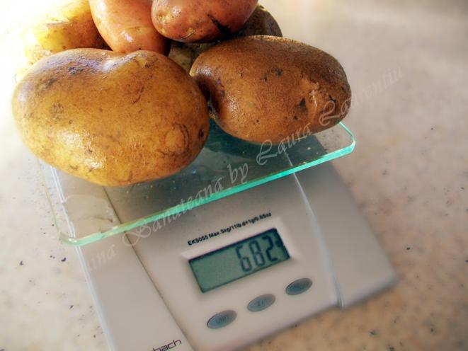 paine de casa cu cartofi cantarirea cartofilor