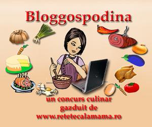 Concurs Bloggospodina - update si juriul complet!
