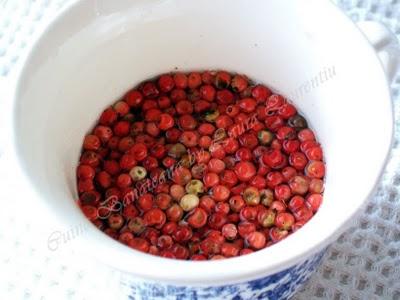 Preparare Piept de curcan cu sos de piper rosu - o reteta rapida si rafinata 1