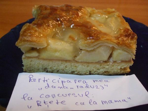 Prajitura cu mere by dana_radu23