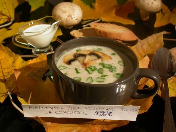 Supa crema de ciuperci by stefanpizza