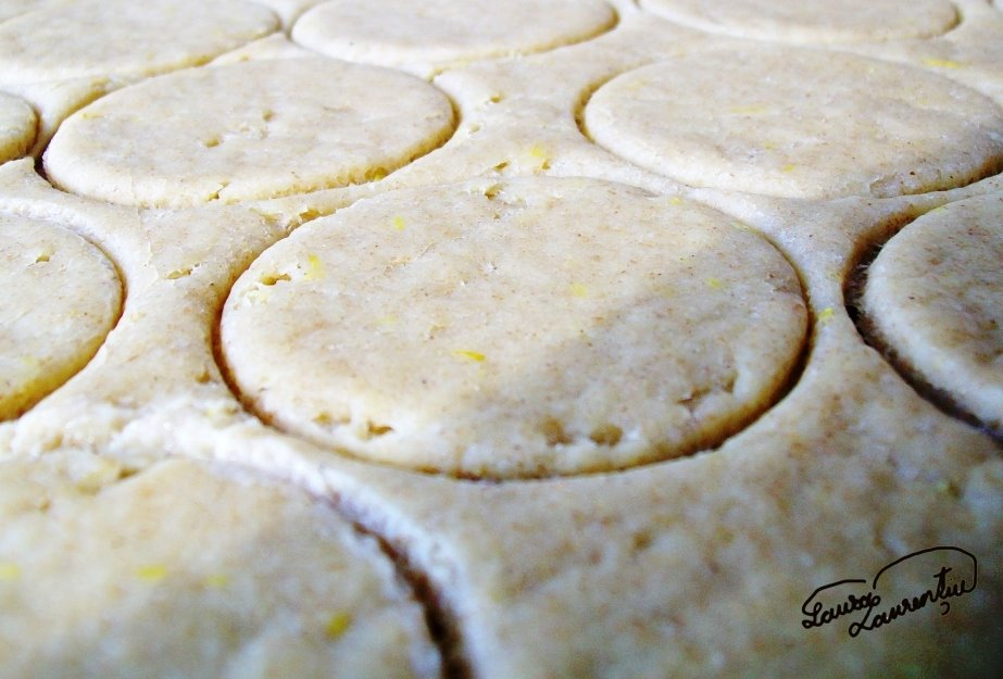 biscuitilamaie 013