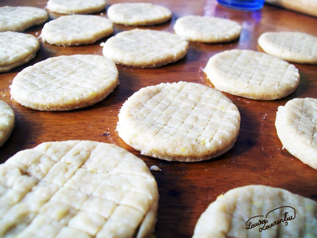 biscuitilamaie 017