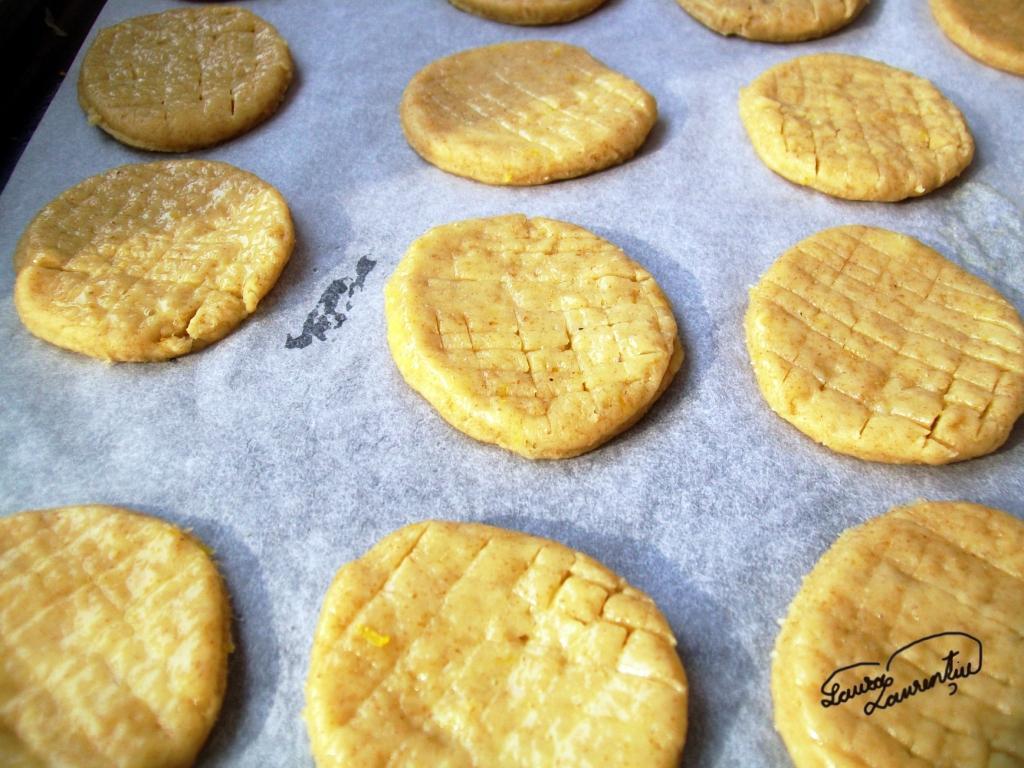 biscuitilamaie 021