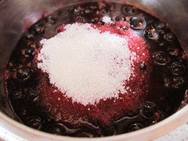 dulceata de coacaze 28629