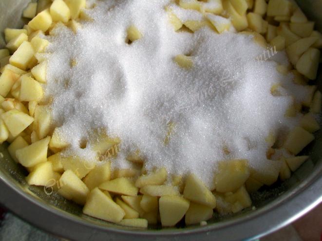 prajitura cu mere si cocos 3