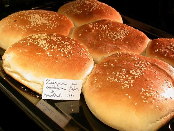 Chifle pentru pljeskavica, hamburger sau sandviciuri by stefanpizza