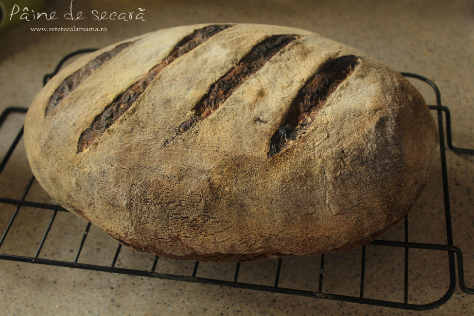 paine de secara coapta, reteta paine secara