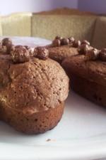 Muffins cu ciocolata by aml1425