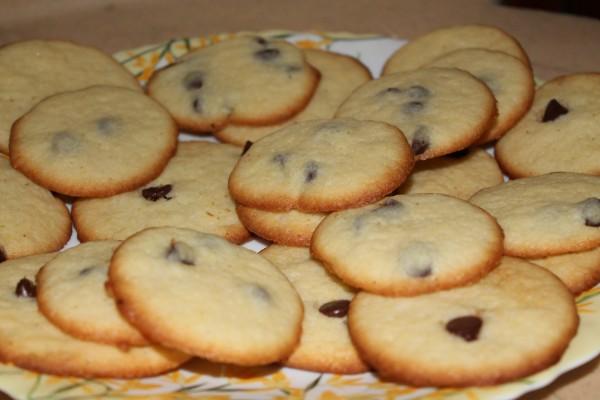 Biscuiti cu ciocolata by radanee