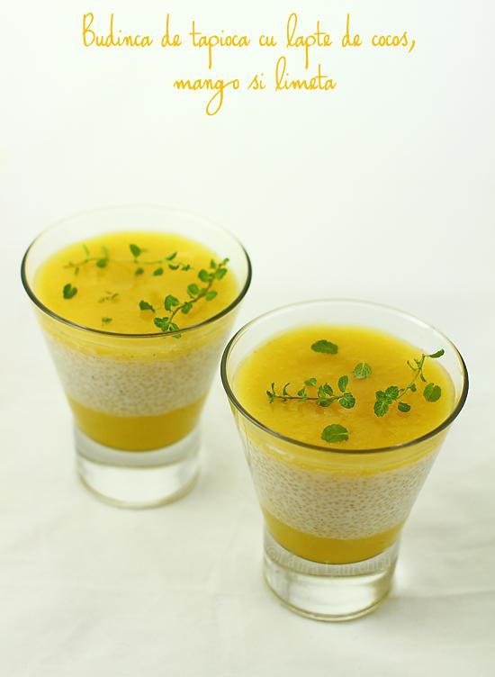 Budinca de tapioca cu lapte de cocos, mango si limeta