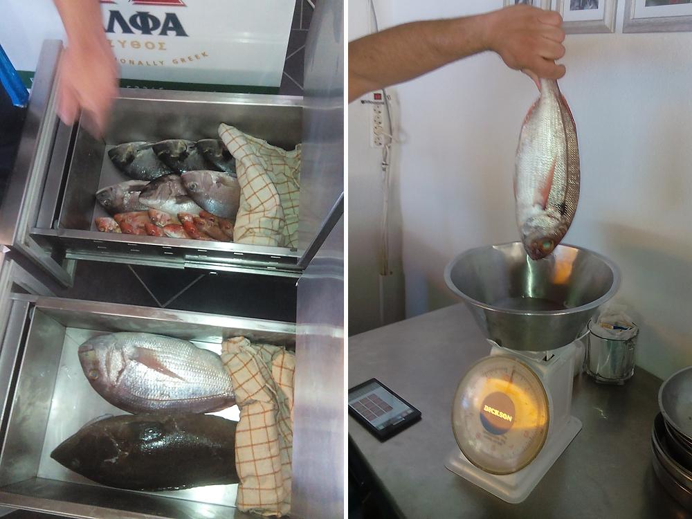 peste proaspat - mâncarea în vacanța din Grecia