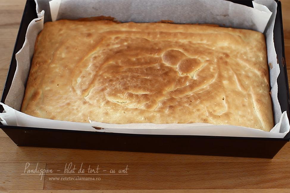 Blat de tort din pandișpan cu unt - video