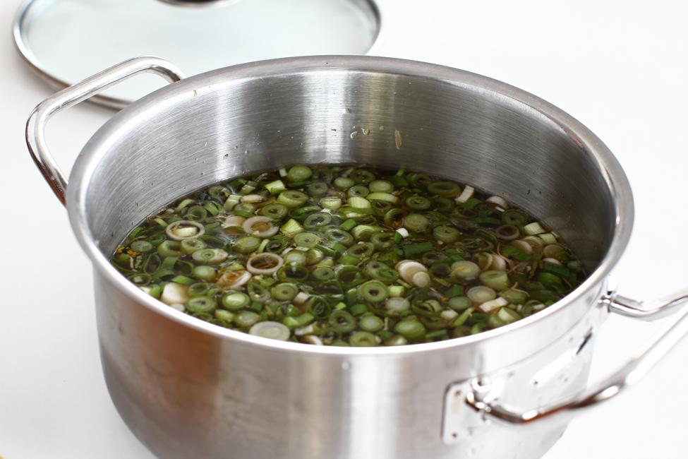 supa de baza pentru botvinya