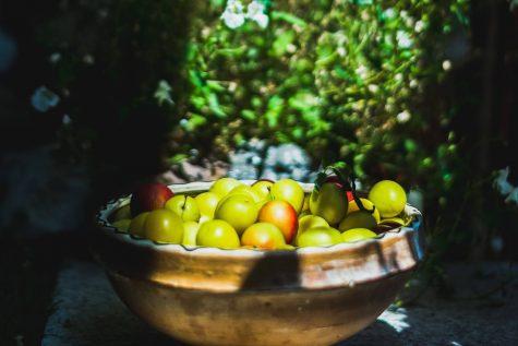 vegetale de gradina @costin barbutz