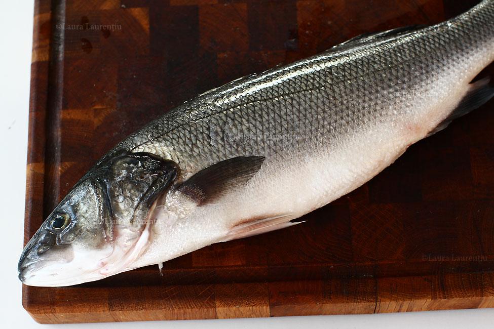 biban-de-mare-lup-de-mare-levrek-sea-bass