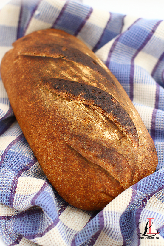 paine cu faina spelta si maia naturala coapta