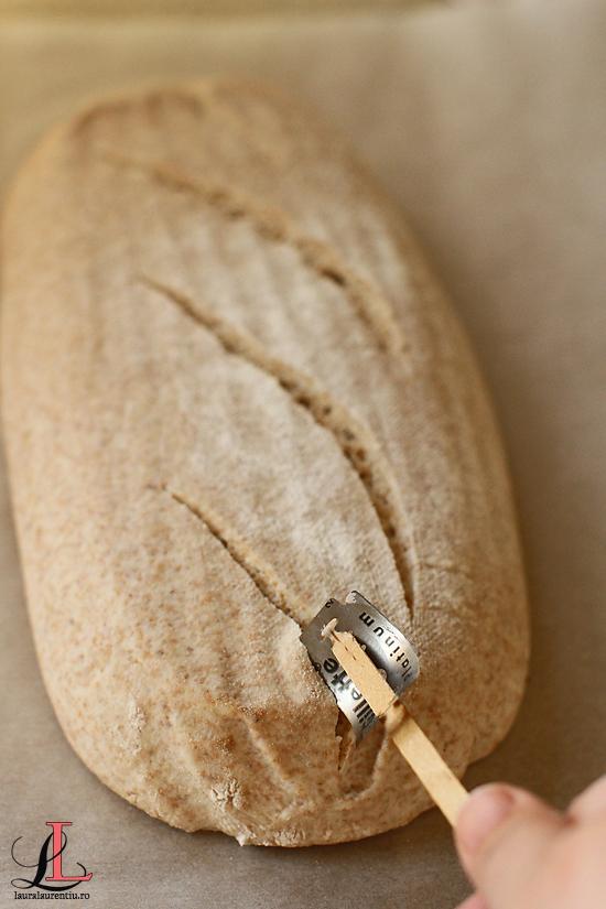 crestare paine cu faina spelta si maia naturala lauralaurentiu