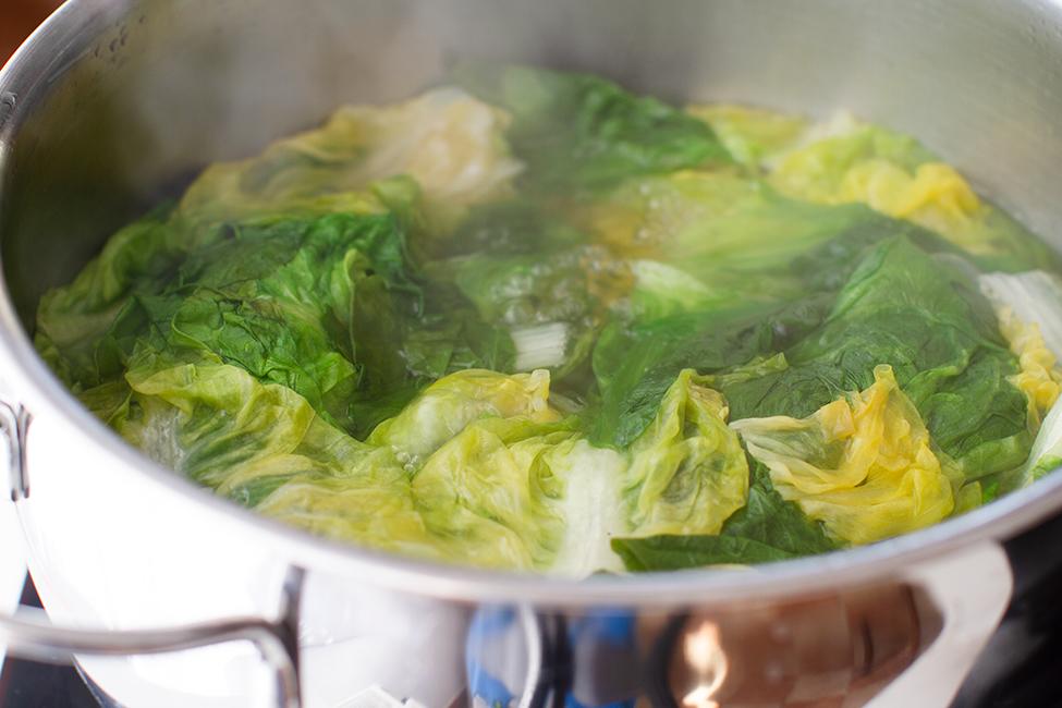 salata verde fiarta