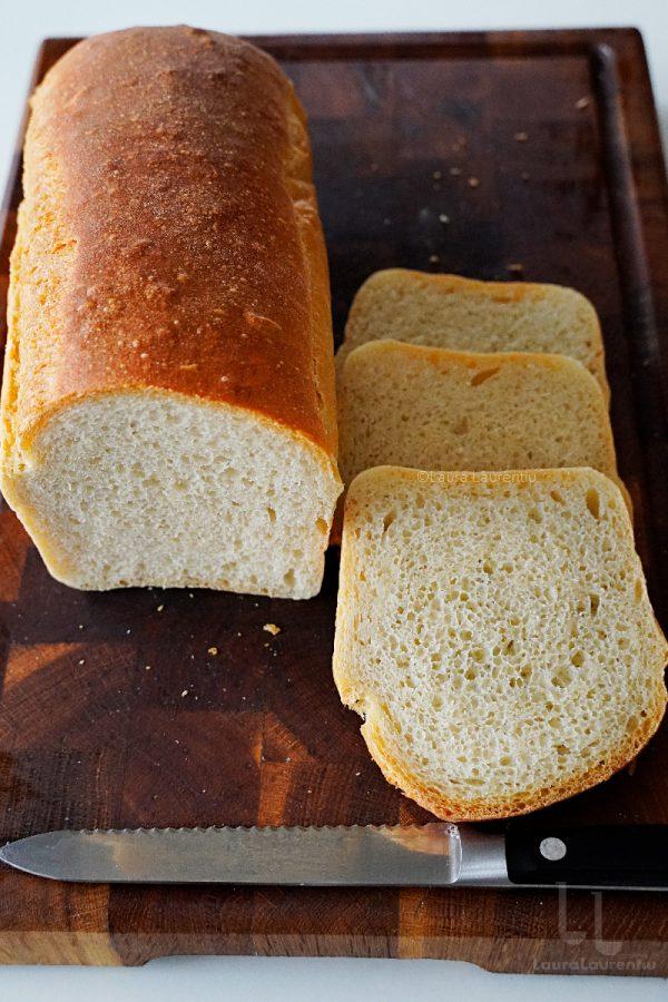 paine simpla reteta cea mai simpla reteta de paine painea feliata