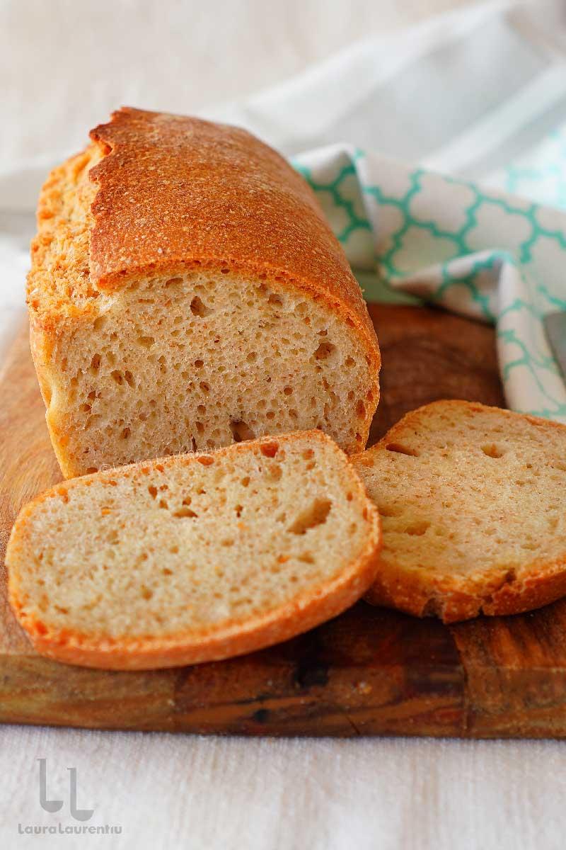paine cu apa fermentata din stafide reteta paine cu drojdie din stafide