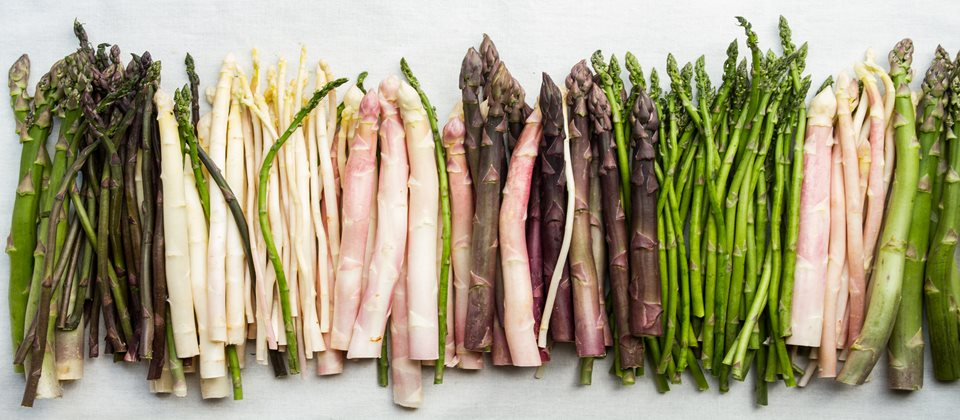 diferite varietati de sparanghel